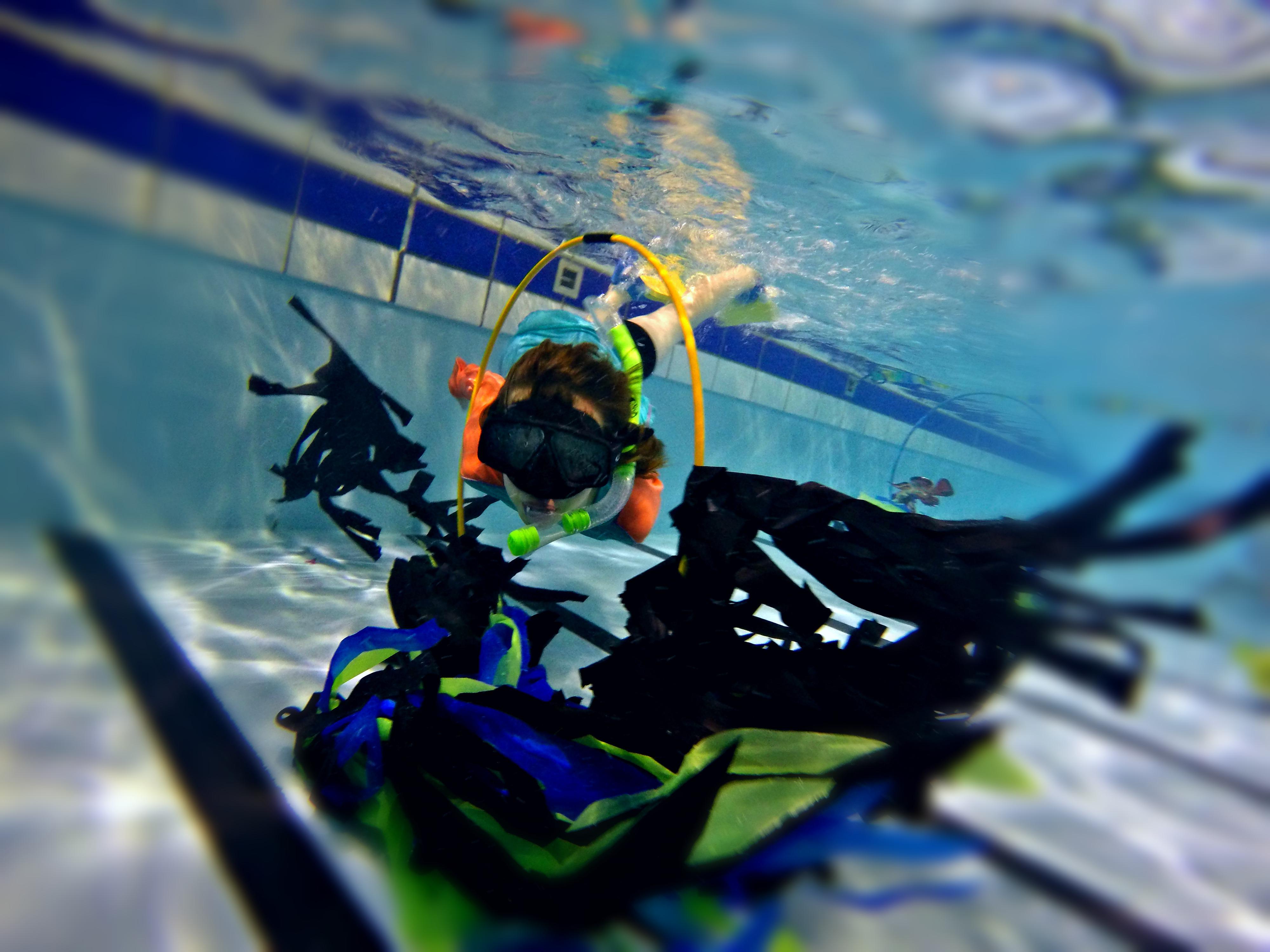 Gallagher Aquatic Centre Hamilton Pools